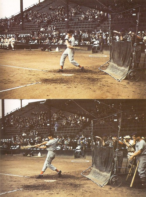 Ted Williams at Lane Field in 1941