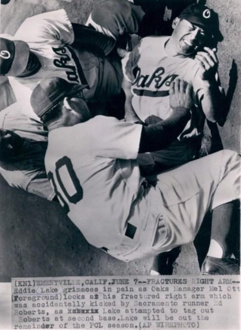 1952 Oakland Oaks